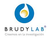 13-BRUDY LAB