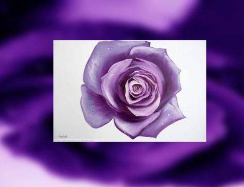 23 de Abril, día del libro y de la rosa