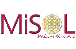 MiSol1