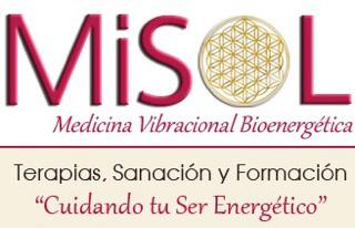 MiSol16