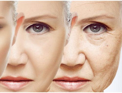 La menopausia precoz podría tratarse con células madre