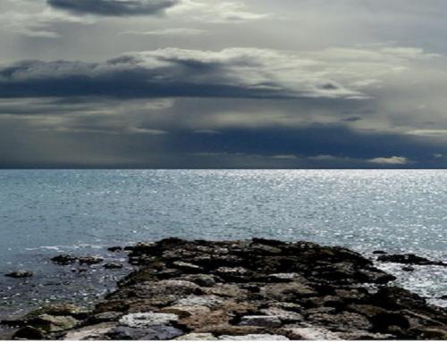 Sed de mar